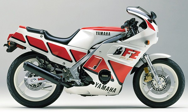 FZ600 2XL